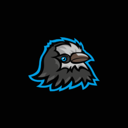 Logo svetelne vystoupeni Kavčí Dílna