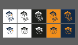 variatny logomanual a graficky manual sportovni akademie vindi academy